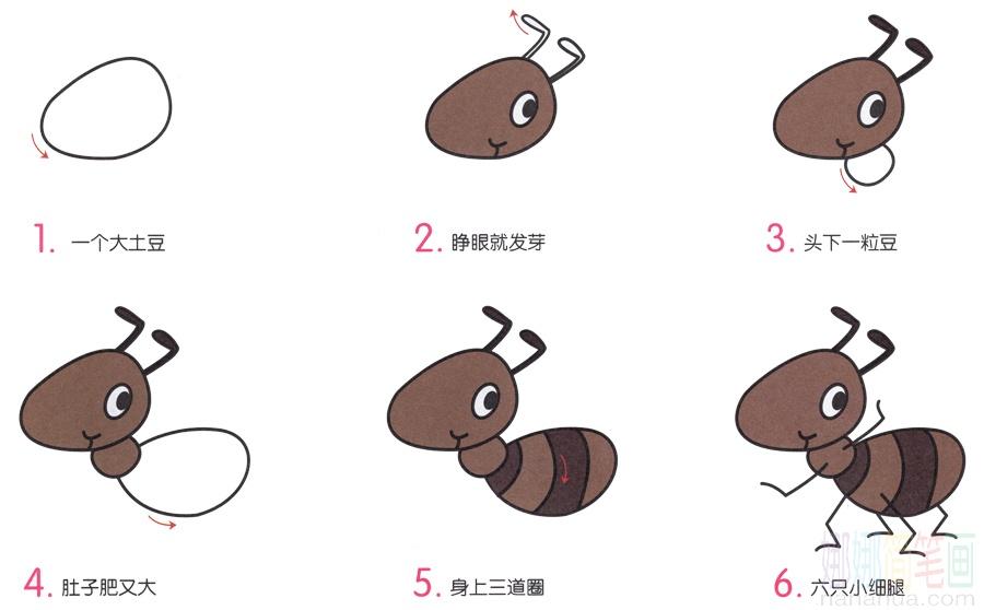 小蚂蚁的画法