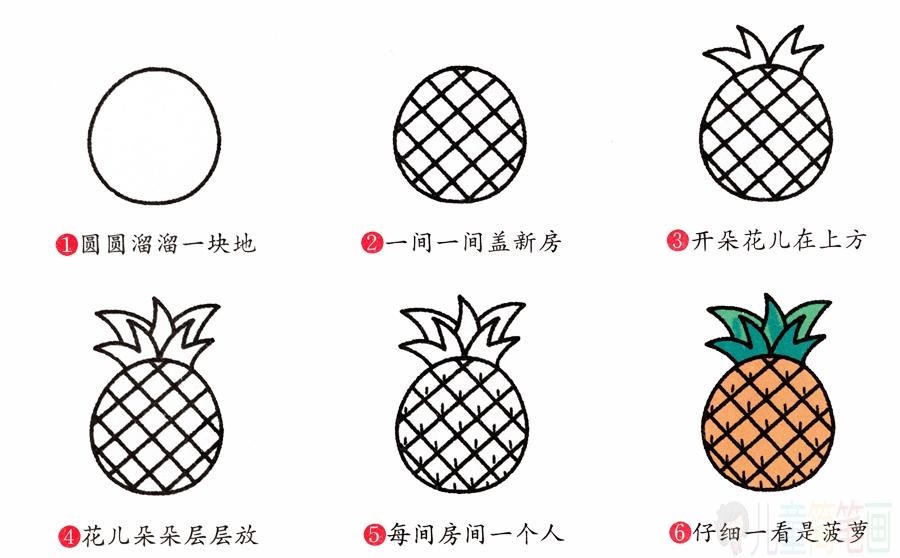 菠萝的简笔画画法