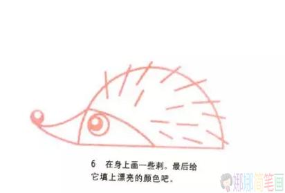 可爱的小刺猬简笔画教程