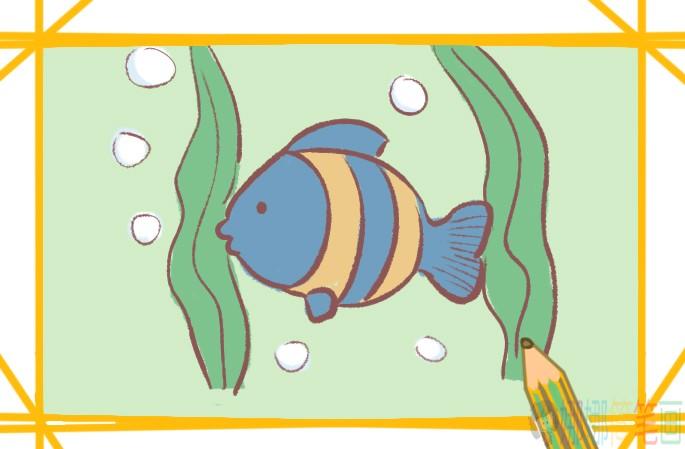 美丽的海鱼简笔画要怎么画