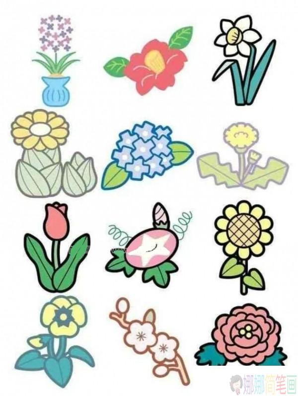 各种好看的花朵彩色简笔画图片