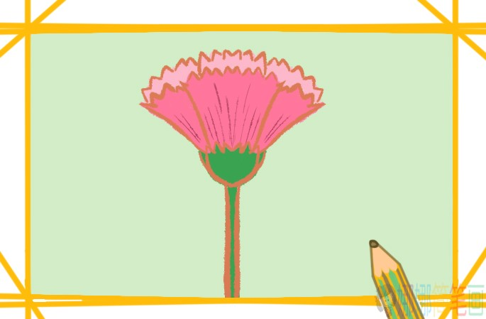 鸡冠花彩色简笔画