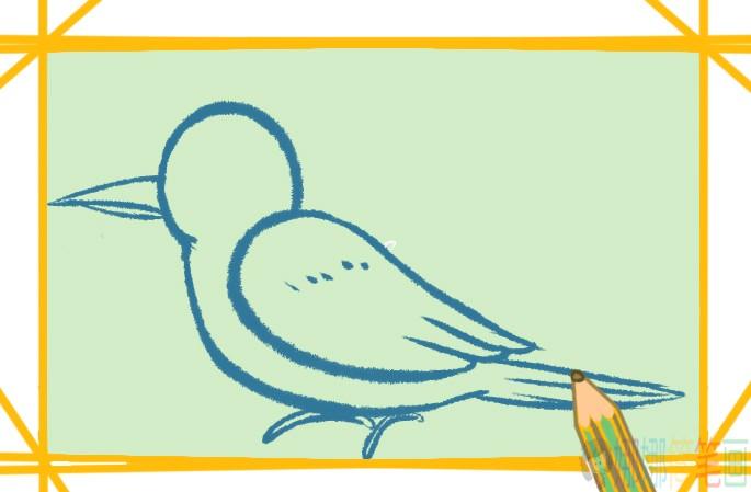 啄木鸟简笔画,啄木鸟怎么画